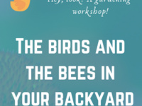 The Birds and the Bees in Your Backyard