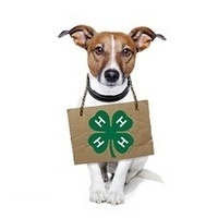 Kansas 4-H Dog Conference & Quiz Bowl