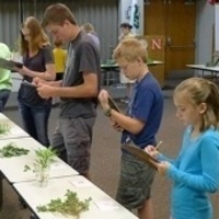 State 4-H Horticulture Judging Contest