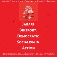 Democratic Socialism in Action