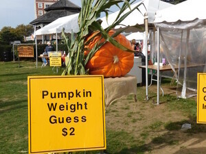 38th Annual Montauk Fall Family Festival, Day 2