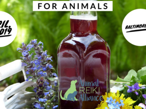 Flower Essences for Animal Companions