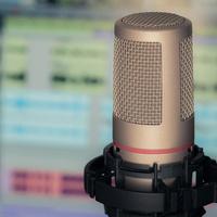 """Podcast-Style Series: """"Interview with an Expert"""""""