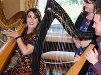 Harp Demonstration