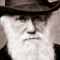 Darwin Day 2019