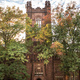 Highlight: Trees of Mount Holyoke Tour