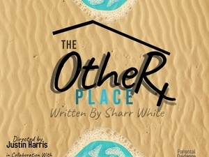The Other Place Live Stage Play