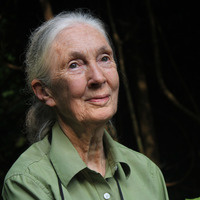 An Evening with Jane Goodall