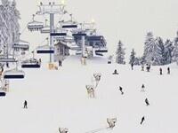 Outdoor Adventure Club 2019 Annual Ski Trip