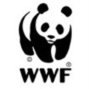 WWF's Greenhouse Sessions - The Future of Mobility