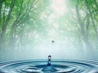 Water Wellness Series II
