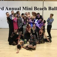 3rd Annual Mini Beach Ball