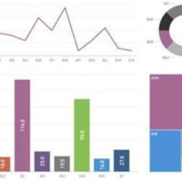 Power BI &  Data Visualization (BTPBI1 -0003)