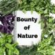 Bounty of Nature: Vertical Gardens
