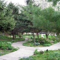 Open Air Studio in the Hearst Garden