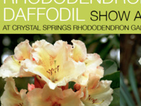 Rhododendron & Daffodil Show and Sale
