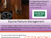 Equine Pasture Management