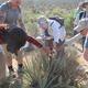 Nevada Naturalist Certification Program