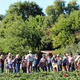 Free Docent-Led Tour of the UCSC Farm