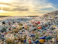 The Secret Lives of Plastic