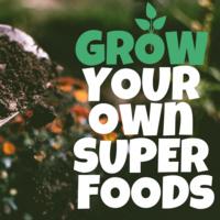 Grow Your Super Foods