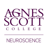 Neuroscience Student Seminars
