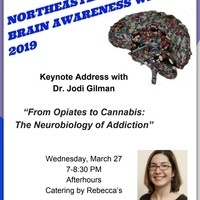 Northeastern University BRAIN AWARENESS WEEK 2019