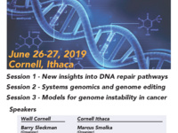 Genome Instability, Repair and Editing Intercampus Symposium