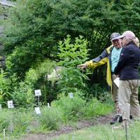 Native Plant Garden Tour + Soil Testing
