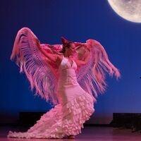 Latin Ballet of Virginia presents Fiesta del Sol