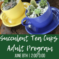 Succulent Tea Cups Make & Take