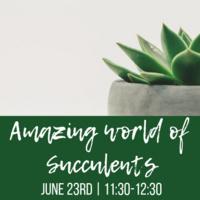 Class: Amazing World of Succulents