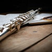 Senior Recital: Ana Boulas, flute