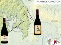 Yamhill-Carlton Focus Flight