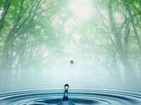 Water Wellness Series III