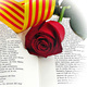 Saint George's Day with the CU Catalan Club