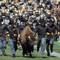 Colorado Buffaloes vs. Washington Huskies