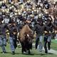Colorado Buffaloes vs. Washington Huskies