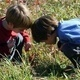 DiscoverE Hide 'n Seekers (Age 5 only):  Neature Detectives