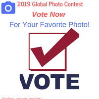 Global Photo Contest: Voting