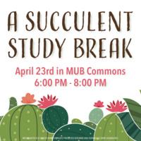 A Succulent Study Break