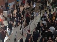 Undergraduate Research Exposition