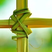 Palm Sunday Mass | Newman Center