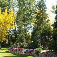 GICES: Pruning Basics