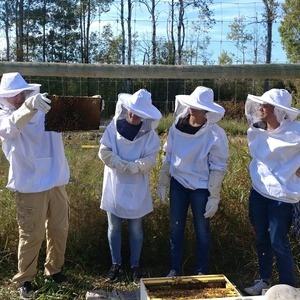 Beekeeping Trivia at The Colgate Inn