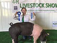 Washoe County Livestock Show