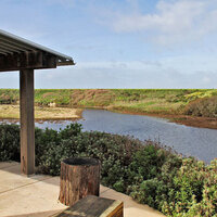 Younger Lagoon Reserve Tours
