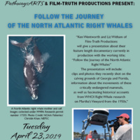 Film: Follow the Journey of the North Atlantic Right Whales
