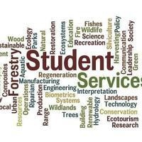 Mentored Employment Program Presentations