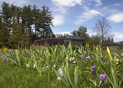 National Public Gardens Week: Spring Garden Highlights Tour